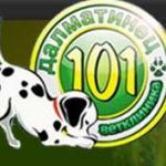 Ветеринарная клиника «101 далматинец»