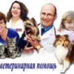 Московская ветеринарная служба «Айболит Вет»