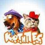 Ветеринарная клиника «Кот и пёс»