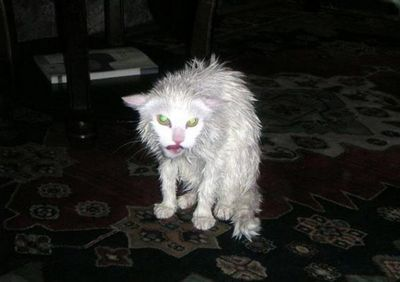 После бани